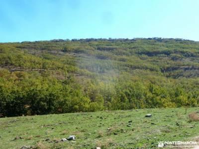 Sabinar y Valle de Lozoya; montaña consejos senderismo para principiantes equipación para hacer se